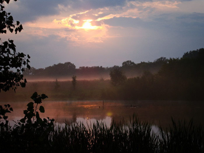 5. This is the Whirledge Wetland in Kimmell, Indiana. The combination of the fog and the sun really make this picture incredible.