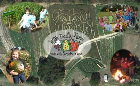 4. Wise Family Farm, Pontotoc