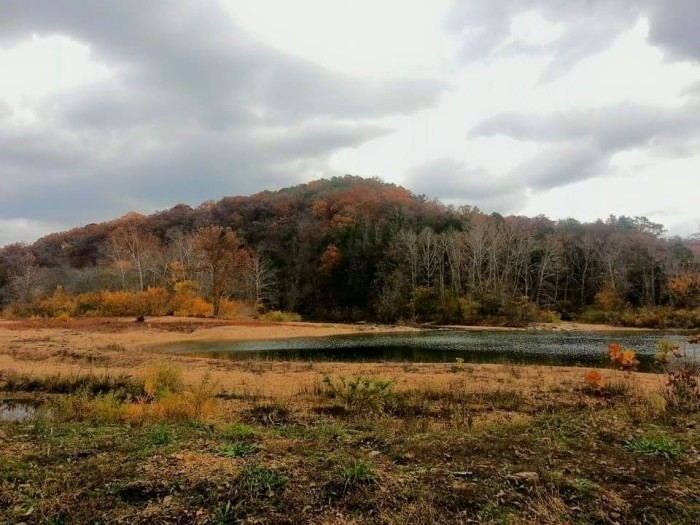 4.  Thank you to Tammy LaBerge for this beautiful fall shot.