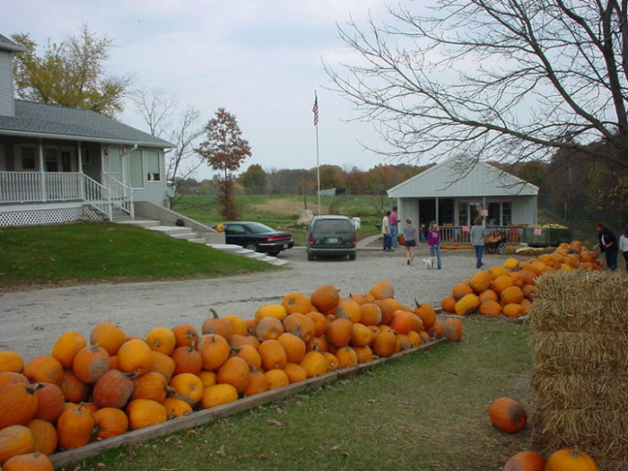 3.Totten's Pumpkin Farm, Lentner