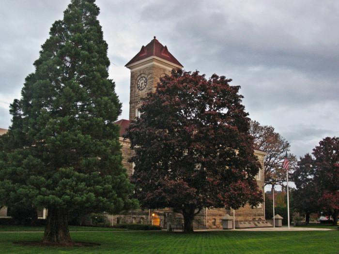 7) Polk County