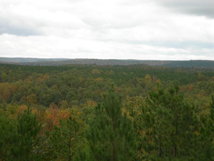 6. Freedom Hills Overlook - Cherokee, AL