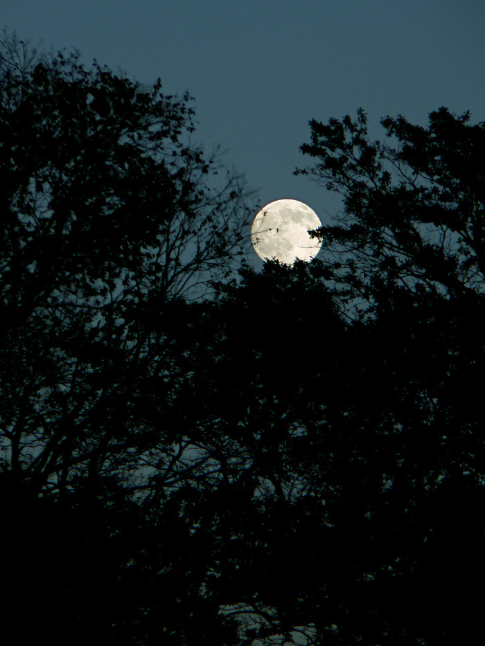 3. A beautifully illuminated full moon overlooking Birmingham, Alabama.