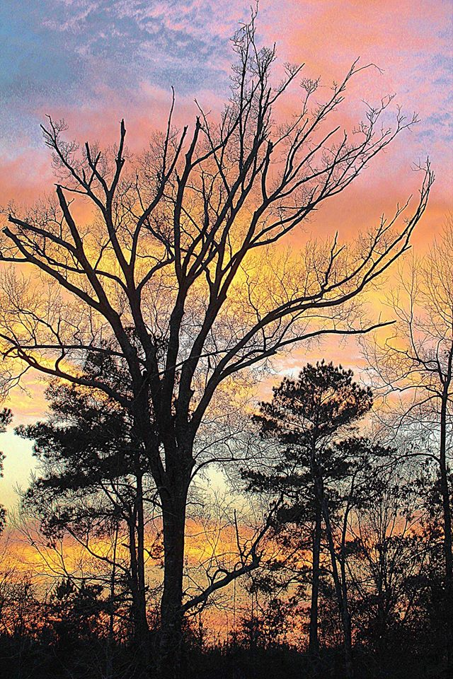 4. A colorful Summit sunset captured by Norma Benton Bowlin.