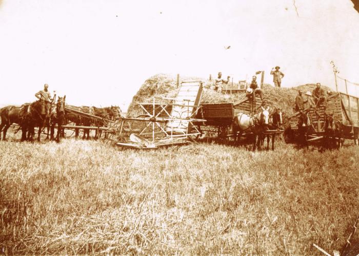 """5. """"Grandpa Ben Roll- Haviland, Kansas, 1915."""""""