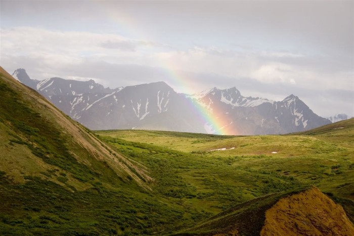 3) I bet at the end of this rainbow is a mama bear and her cubs!