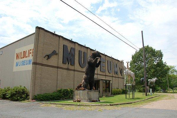 1) Touchstone Wildlife & Art Museum, Haughton