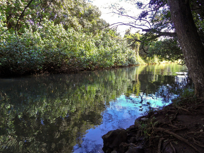 5) Huleia River is approximately five miles long and flows through the Huleia National Wildlife Refuge near Lihue, on Kauai.