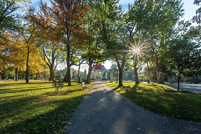 5.  Ho Pham got this capture of the sun peeping through the trees at Tower Grove Park in St. Louis.