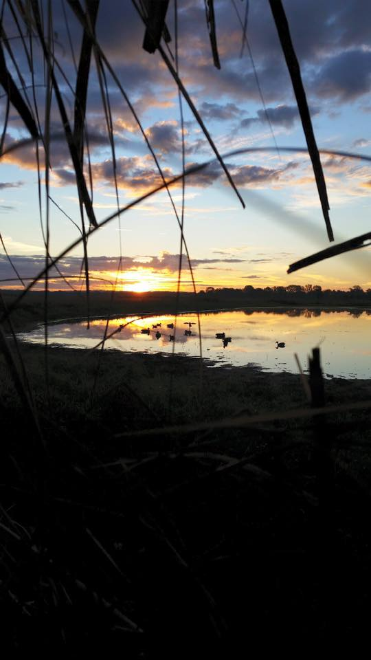 """5. Stacey Moeser took this shot at BK Leach, """"waiting for sun to rise and the ducks to land""""."""