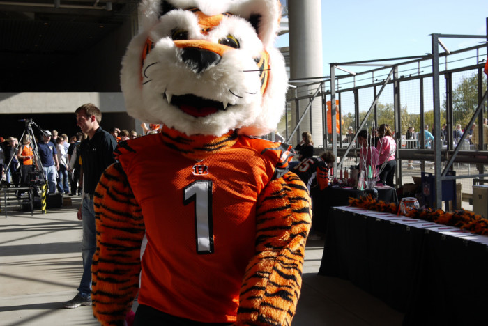 3. ...Or the bengal tiger Who Dey.