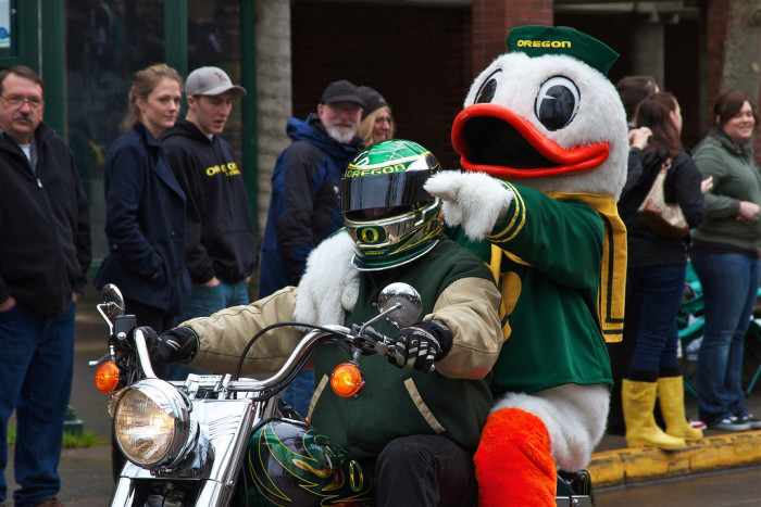 4. The Oregon Duck's mascot was suspended for physically fighting the Houston Cougar's mascot.