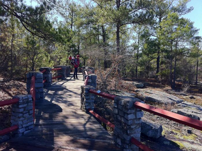 8. Panola Mountain State Park - 2600 Georgia 155 SW, Stockbridge, GA 30281