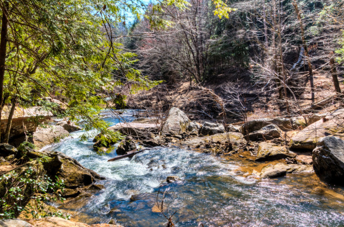 3. William B. Bankhead National Forest
