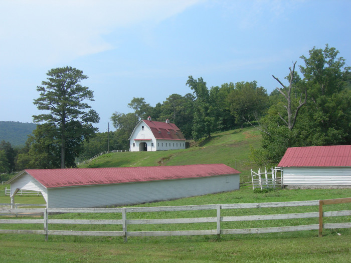 5. This Alabama farm is located at the intersection of AL Hwy 75 and Blount County Road 15, south of Oneonta.