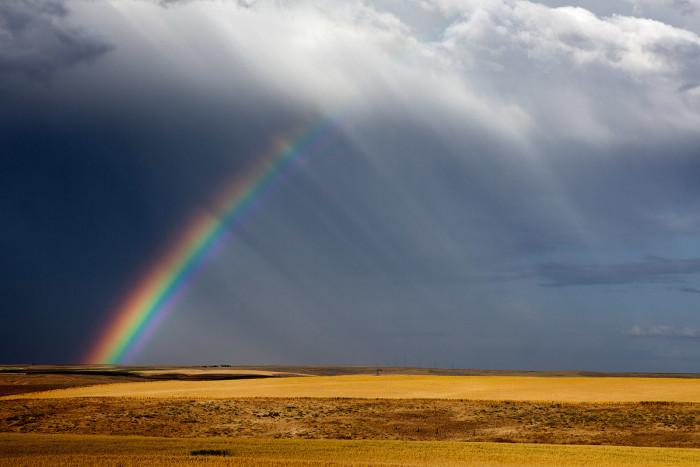 1) Rainbow at Oregon Raceway Park, Grass Valley.