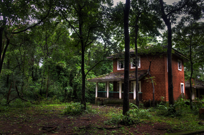 6) Your weekend plans? Are ruled by haunted houses.