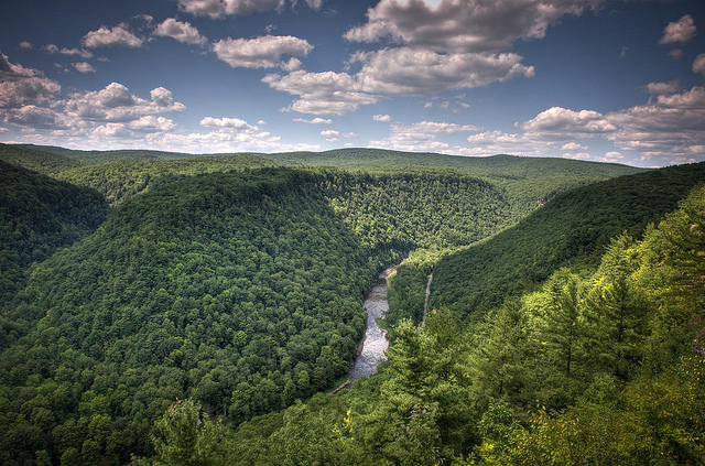 1. Grand Canyon of Pennsylvania
