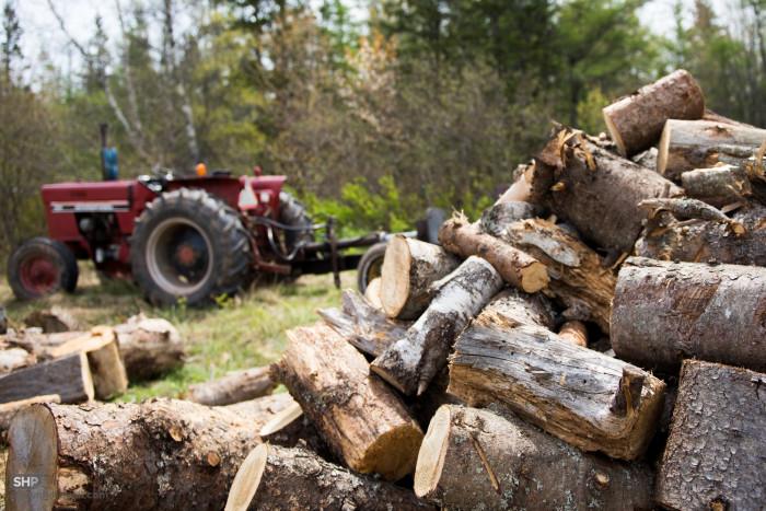 6. Better start stocking up on firewood.