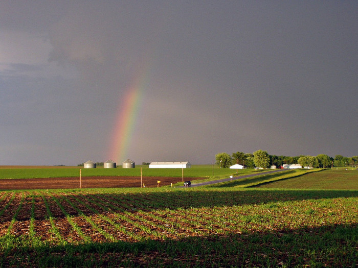 8. This little rainbow managed to break free from the dark clouds.