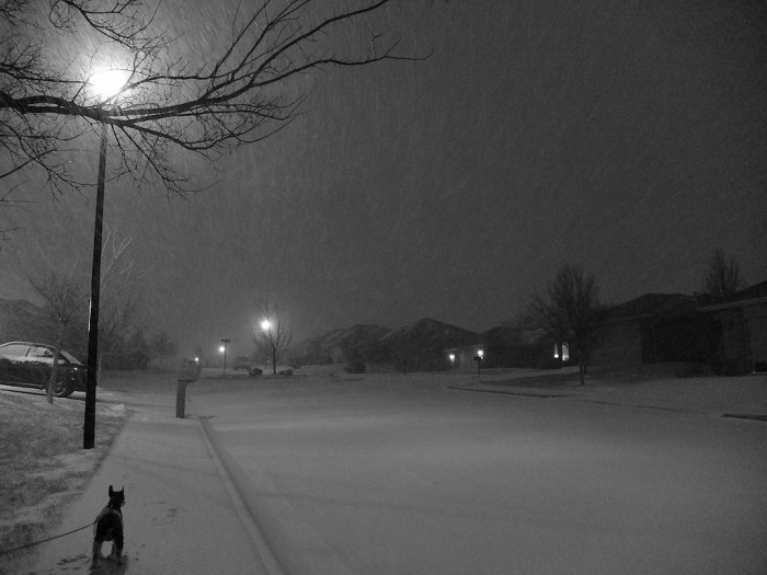 5. You can almost smell the fresh snow and hear the hushed winter night in this lovely black and white shot.
