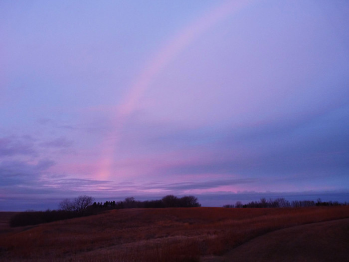 2. In the MN Wetlands, this winter rainbow was captured in brilliant shades of pink and purple.