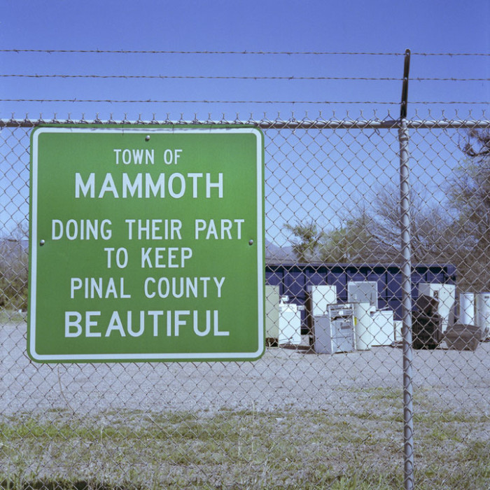8. Mammoth