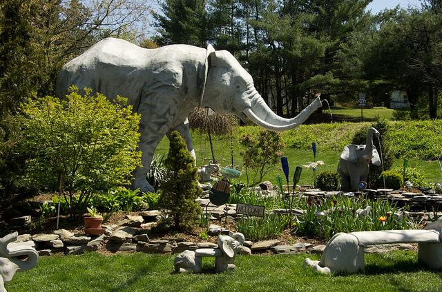 6. Mister Ed's Elephant Museum in Orrtanna