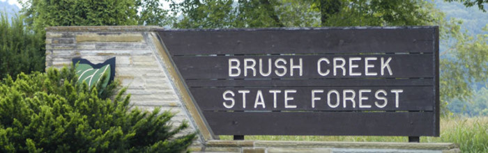 6. Brush Creek State Forest (Adams, Pike and Scioto counties)