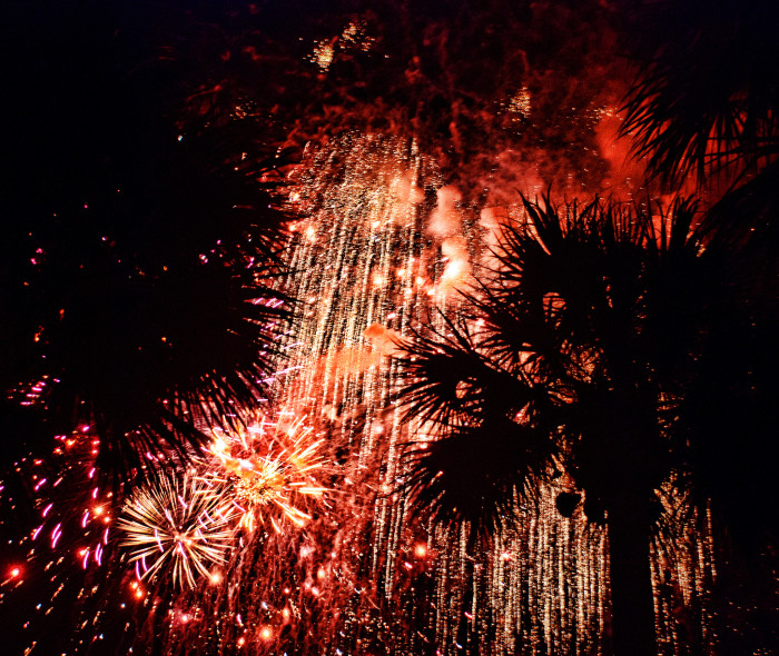 13. Fireworks seen through the palms in Hobe Sound