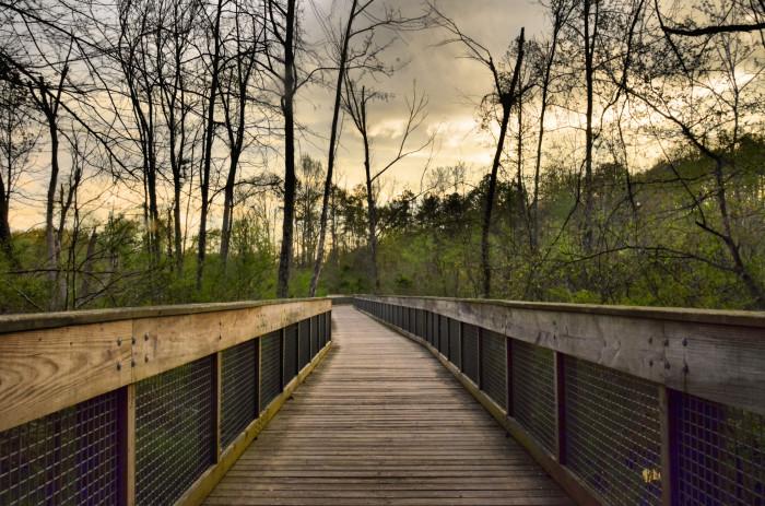 8. Suwanee Creek Greenway - 1170 Buford Hwy, Suwanee, GA 30024