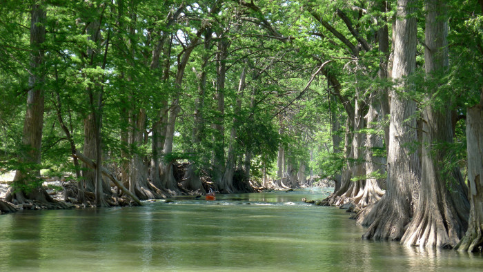 1) The Guadalupe River looks so peaceful and inviting in this picture, don't you think?