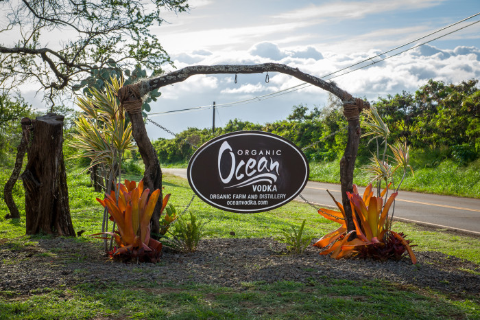 8) Ocean Vodka – handcrafted in Hawaii – is the only spirit in the world made with deep ocean mineral water, and the only vodka distilled with organic sugar cane.