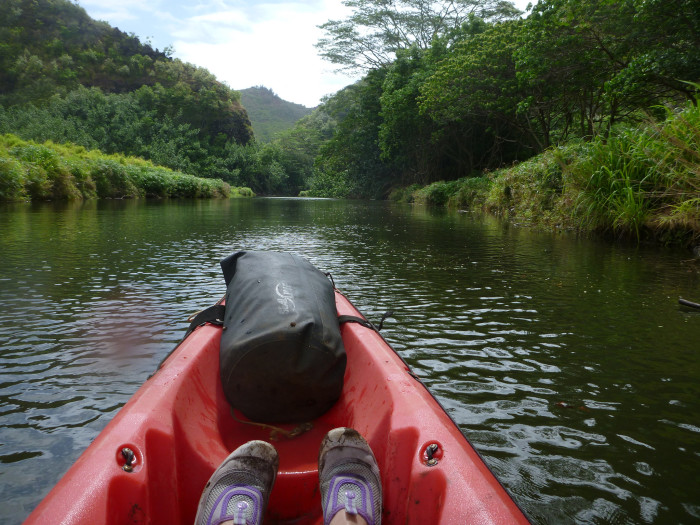 8) The Wailua River is one of only five navigable rivers in Hawaii. The river drains from Waialeale Mountain, which averages 488 inches of rain annually.