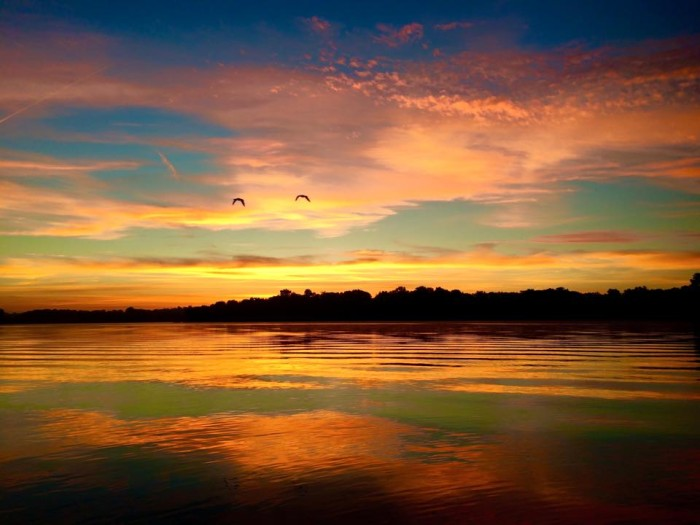 8.  I love the flying geese in this shot by Gina Tamburello McClaine  featuring sunrise in Lake Saint Louis.