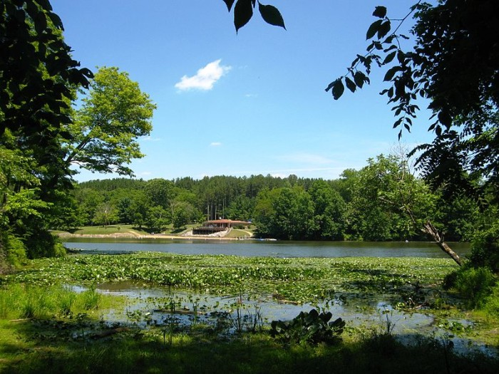 10. Blue Rock State Forest (Muskingum County)