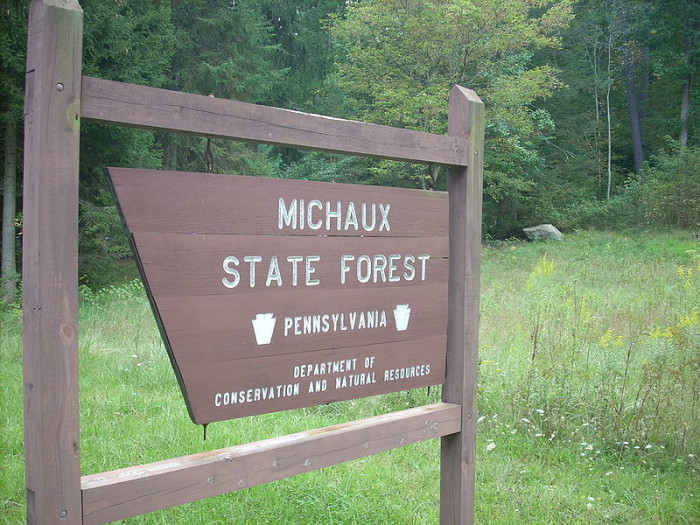 7. Michaux State Forest