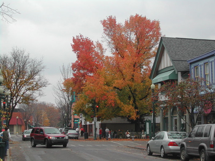 2. Sewickley Heights