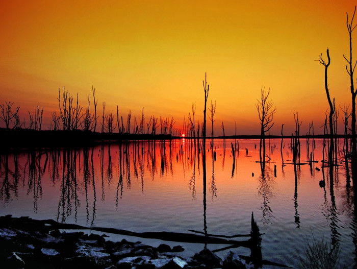 1. Vibrant yellows and oranges light up the Manasquan Reservoir at sunrise.