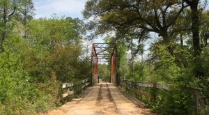 Don't Drive Down These 8 Haunted Roads In Mississippi Or You'll Regret It