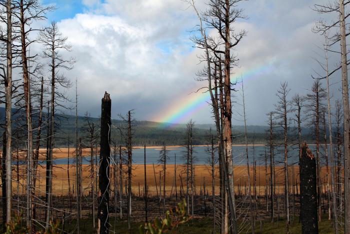 11) A rainbow near Bend.