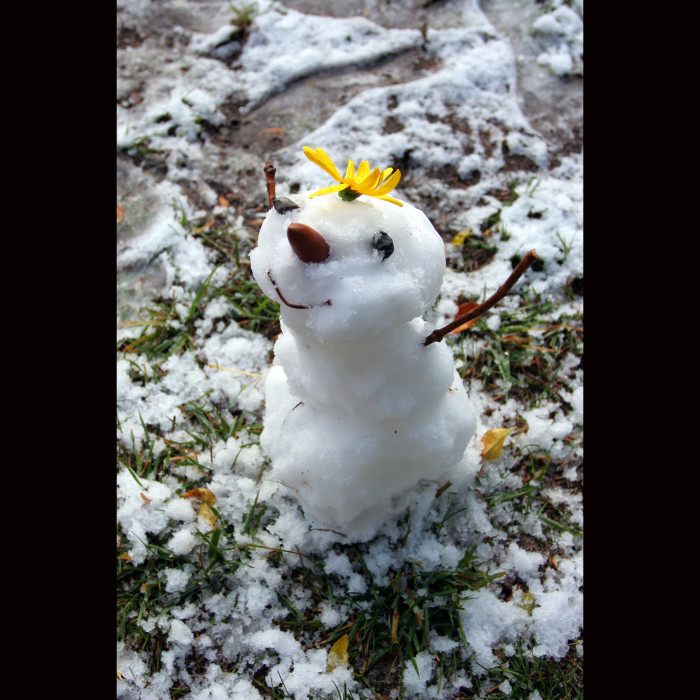 8. I hope it snows this year. And no matter what, I'm building a snowman.