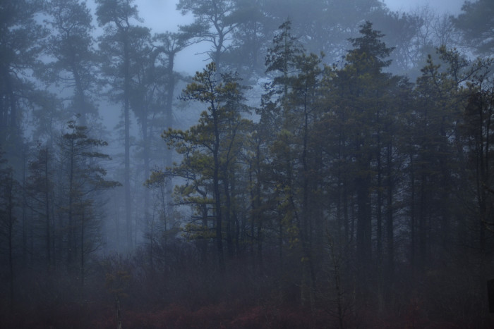 6. The Pinelands Preservation Act was passed - 1979.