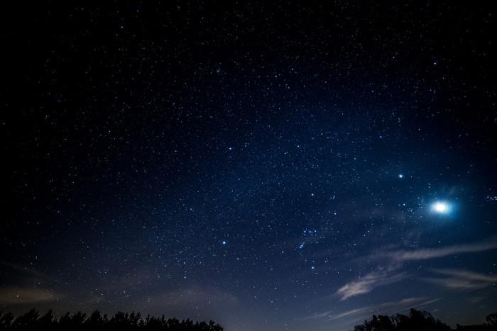 6. Starry Sky - Cohutta National Forest