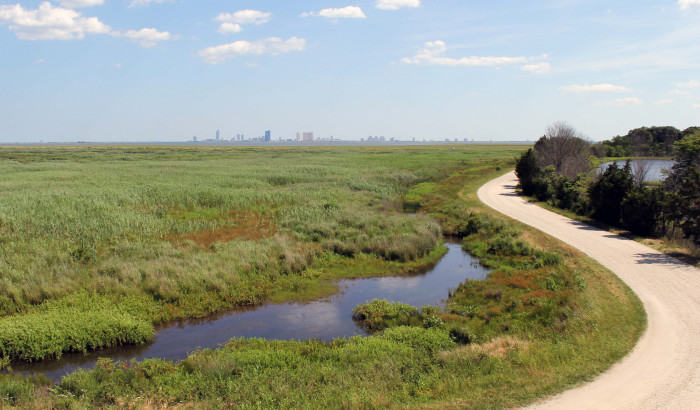 11. Songbird Trail