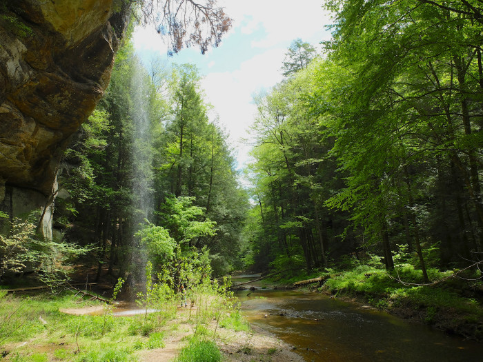 2. Hocking State Forest (Hocking County)