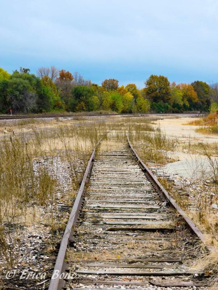 9. Erica Arnett Bone got this cool capture of railroad tracks in Bismarck.