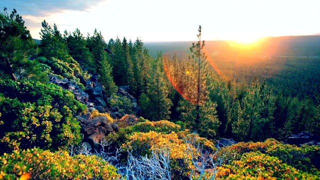 4) Gilchrist State Forest