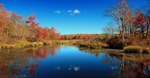 3. Tobyhanna State Park