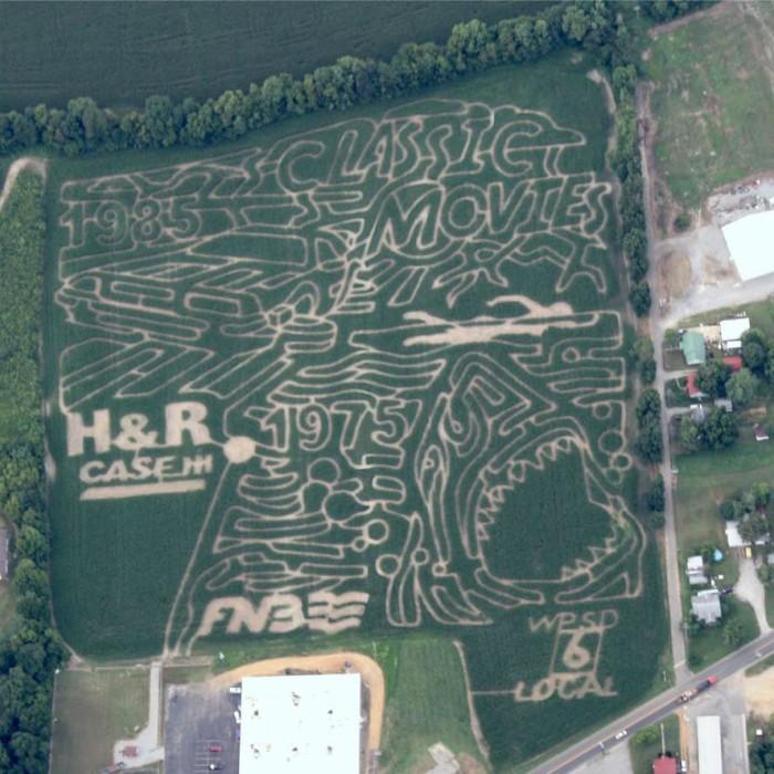 3. A-Maiz-ing Farms